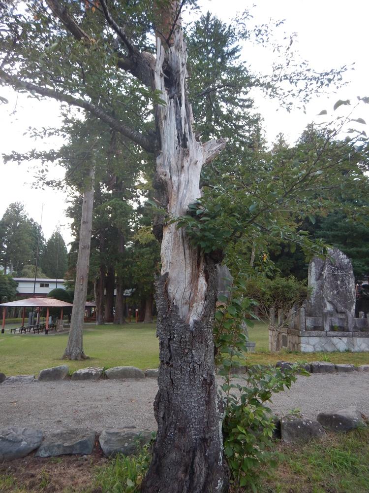 砥森神社例祭に_c0111229_18525499.jpg