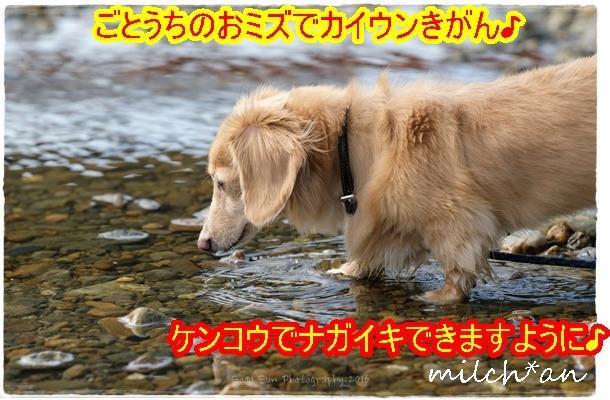 b0115642_21211233.jpg