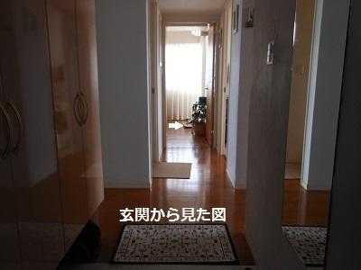 c0261346_10583018.jpg