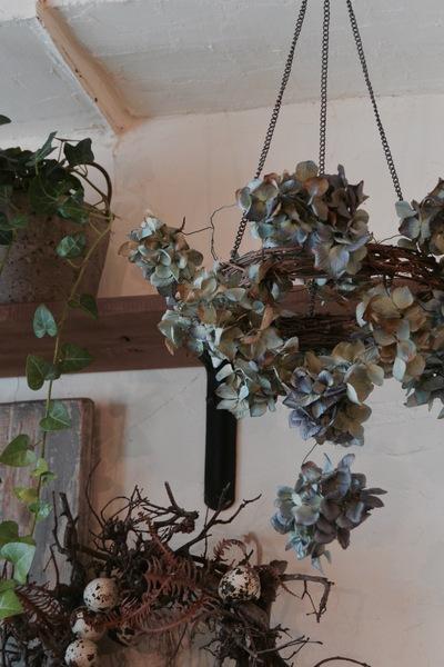 dried flower。。。_a0229658_16371430.jpg