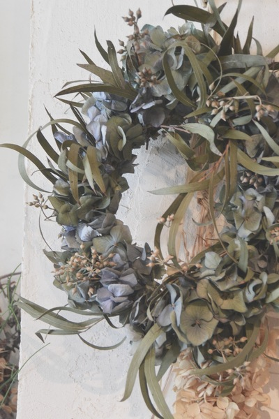 dried flower。。。_a0229658_16404955.jpg