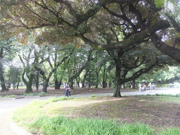 上野の森_d0193569_15202418.jpg