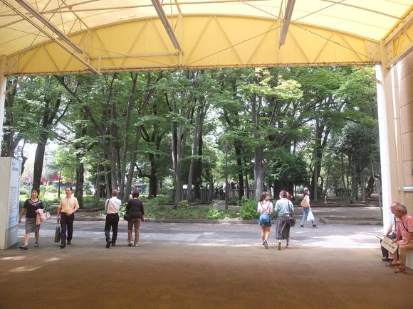 上野の森_d0193569_1538777.jpg