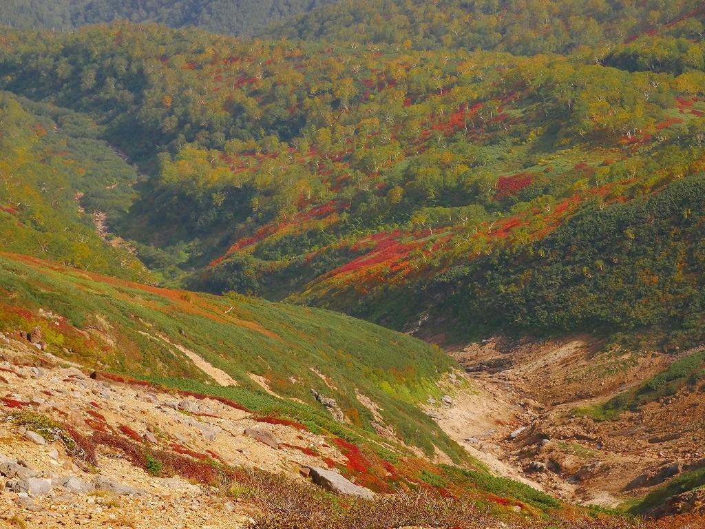 愛別岳の紅葉、9月22日-愛山渓温泉から愛別岳編-_f0138096_1152133.jpg