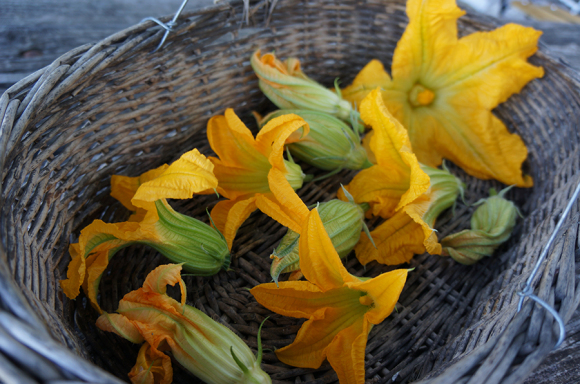 今年風ズッキーニの花の詰め物_f0106597_05300204.jpg