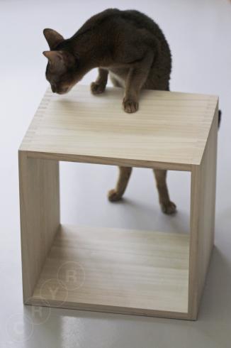 [猫的]桐ボックス_e0090124_22321121.jpg