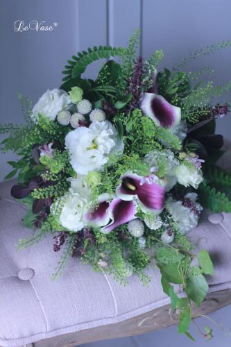 秋の花へ_e0158653_17254320.jpg