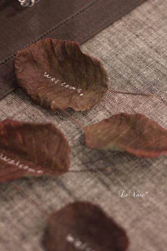 秋の装い_e0158653_17264699.jpg