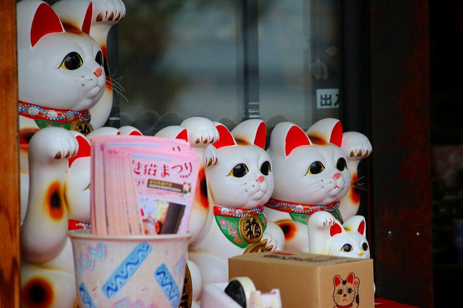来る福招き猫祭りのデジブックを公開しました。_c0265095_2322047.jpg