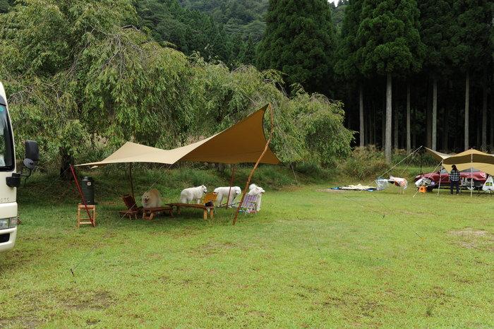 開幕キャンプ inリバーランズ角川♪_a0049296_18503848.jpg