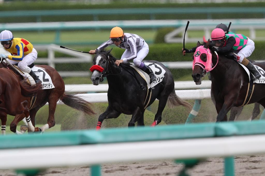 2016年9月25日 神戸新聞杯(GⅡ)&ジョッキーフェスティバル_f0204898_647123.jpg