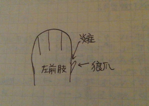 d0224111_20031900.jpg