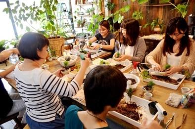 豆盆栽ワークショップ開催風景_d0263815_15462318.jpg
