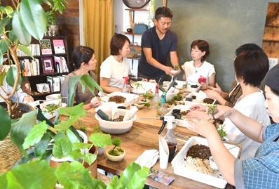 豆盆栽ワークショップ開催風景_d0263815_16402937.jpg