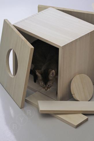 [猫的]遷宮_e0090124_23031870.jpg