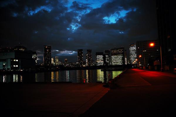 夕焼けと夜景とツタと雲_b0175635_22045879.jpg
