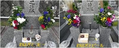 お彼岸の墓参りで情報交換 料理 本 紫陽花_a0084343_11391072.jpg