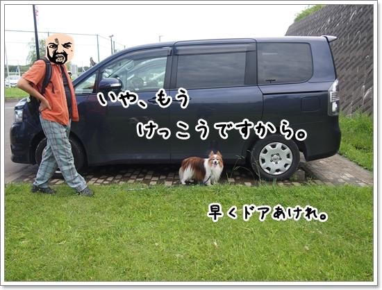 d0013149_01132059.jpg