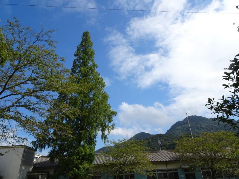 客山ルート整備・・・孝子の森_c0108460_18232619.jpg