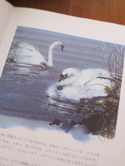 ミルコ・ハナークの白鳥_c0084183_10121069.jpg