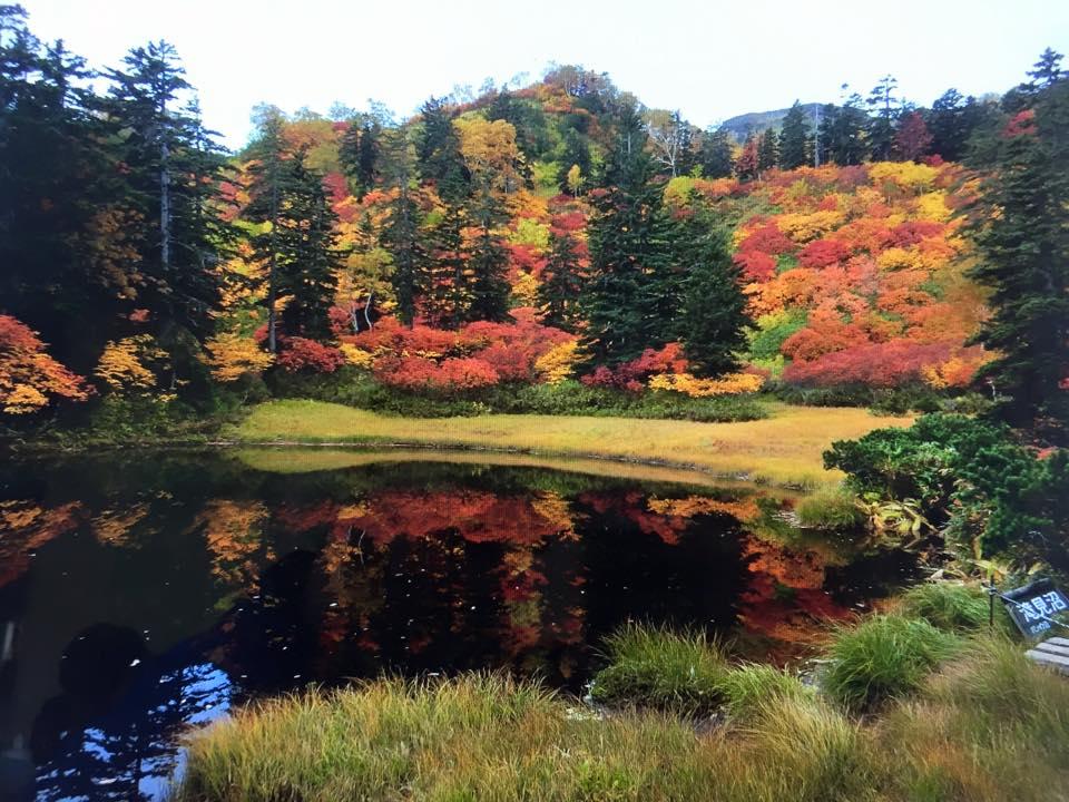 高原温泉の紅葉が見頃ですよぉ(゜o゜)_f0096216_1955148.jpg