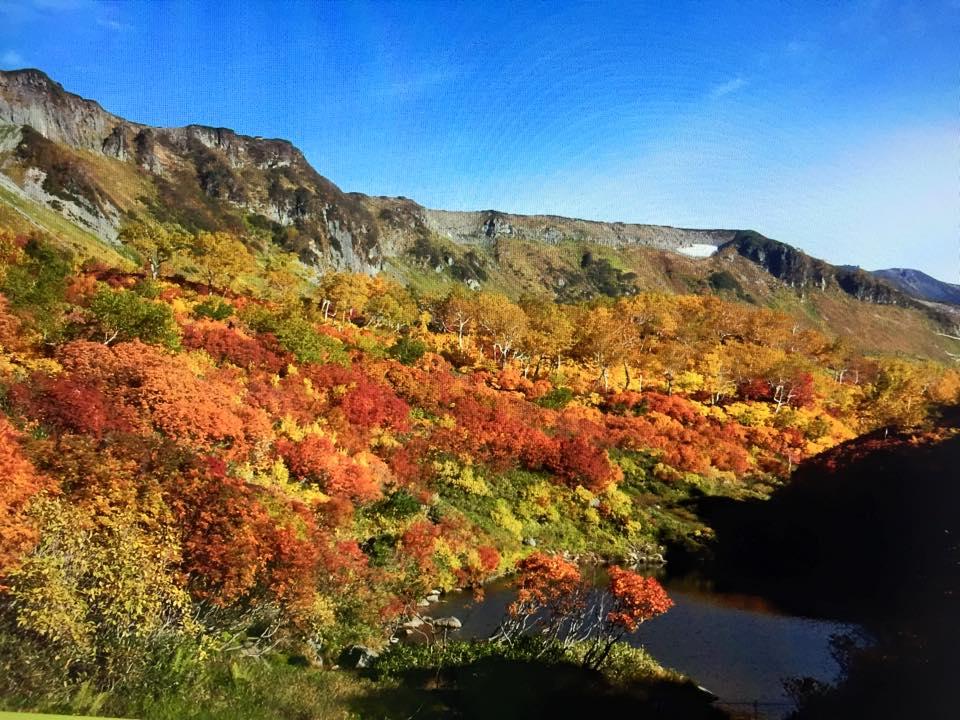 高原温泉の紅葉が見頃ですよぉ(゜o゜)_f0096216_1955253.jpg