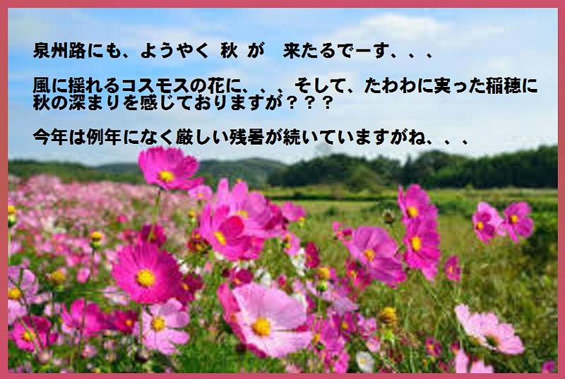 d0211219_20311172.jpg