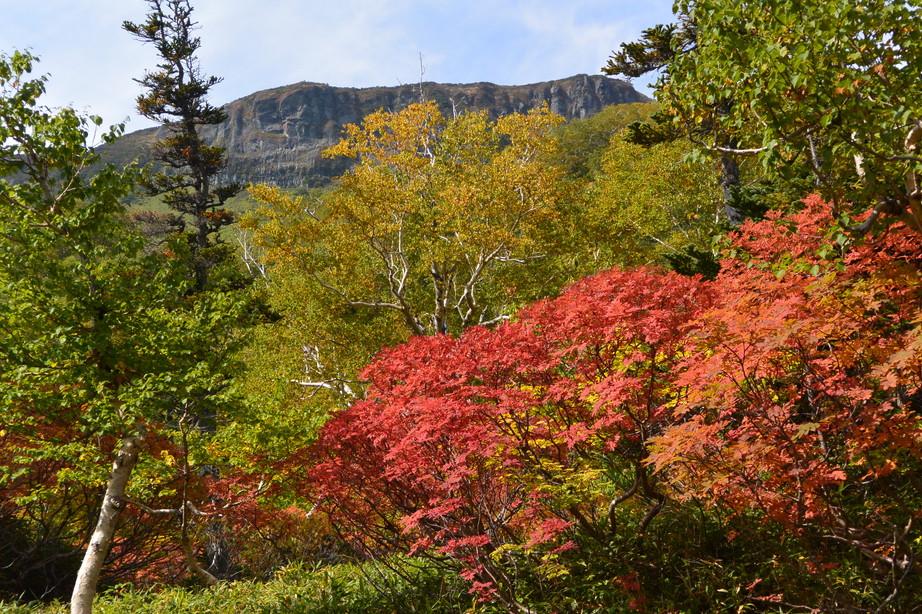 """2016年9月 『赤に染まる大雪山』 September 2016 \""""Red Mountains\""""_c0219616_18201574.jpg"""