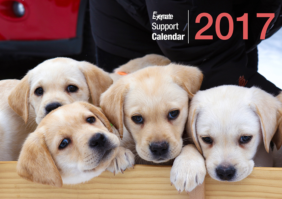 2017 アイメイト60周年 アイメイトサポートカレンダー 販売開始_d0323943_21153605.jpg