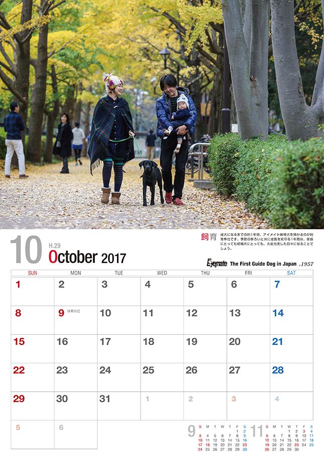 2017 アイメイト60周年 アイメイトサポートカレンダー 販売開始_d0323943_21275374.jpg