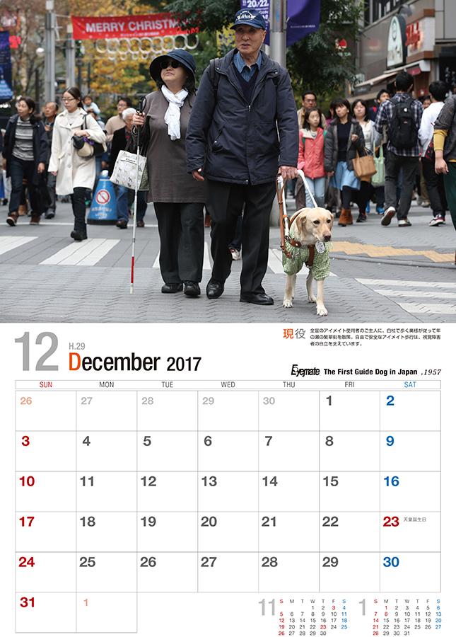 2017 アイメイト60周年 アイメイトサポートカレンダー 販売開始_d0323943_21500383.jpg