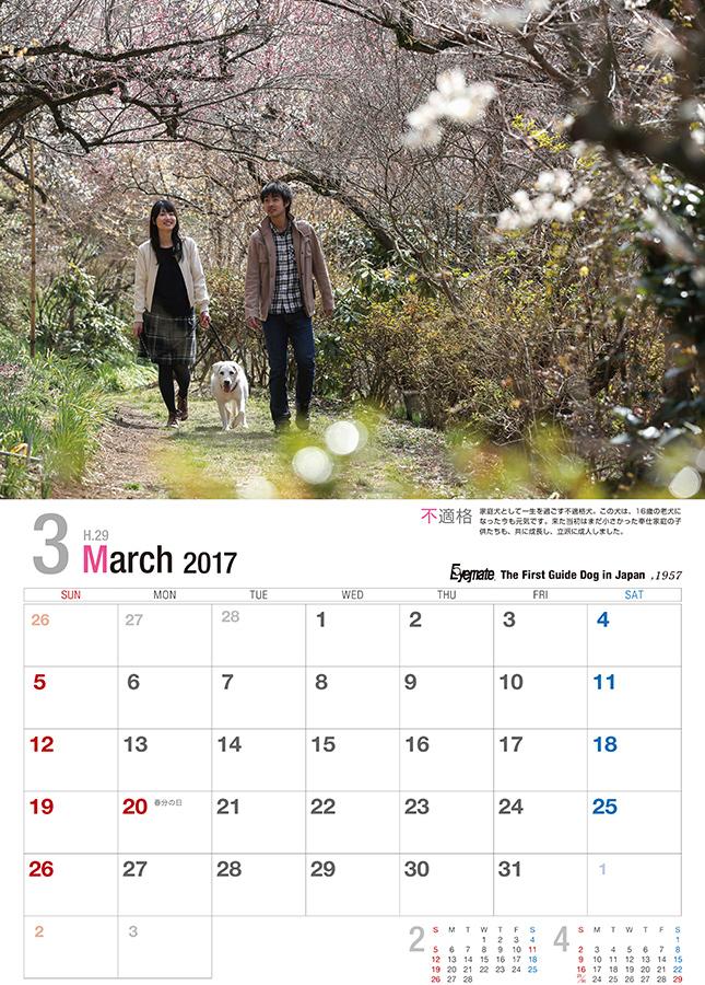 2017 アイメイト60周年 アイメイトサポートカレンダー 販売開始_d0323943_22365493.jpg