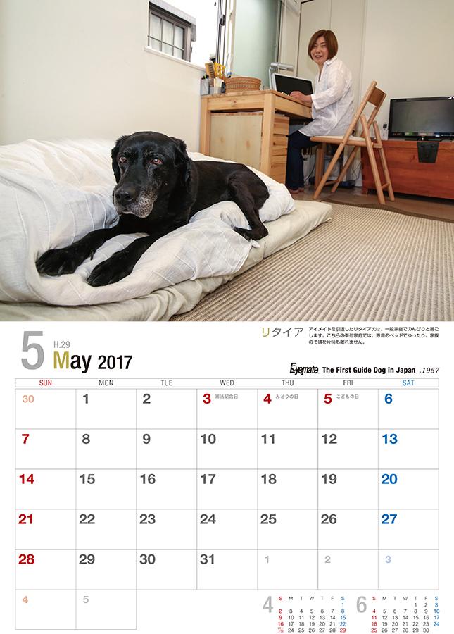 2017 アイメイト60周年 アイメイトサポートカレンダー 販売開始_d0323943_22563705.jpg