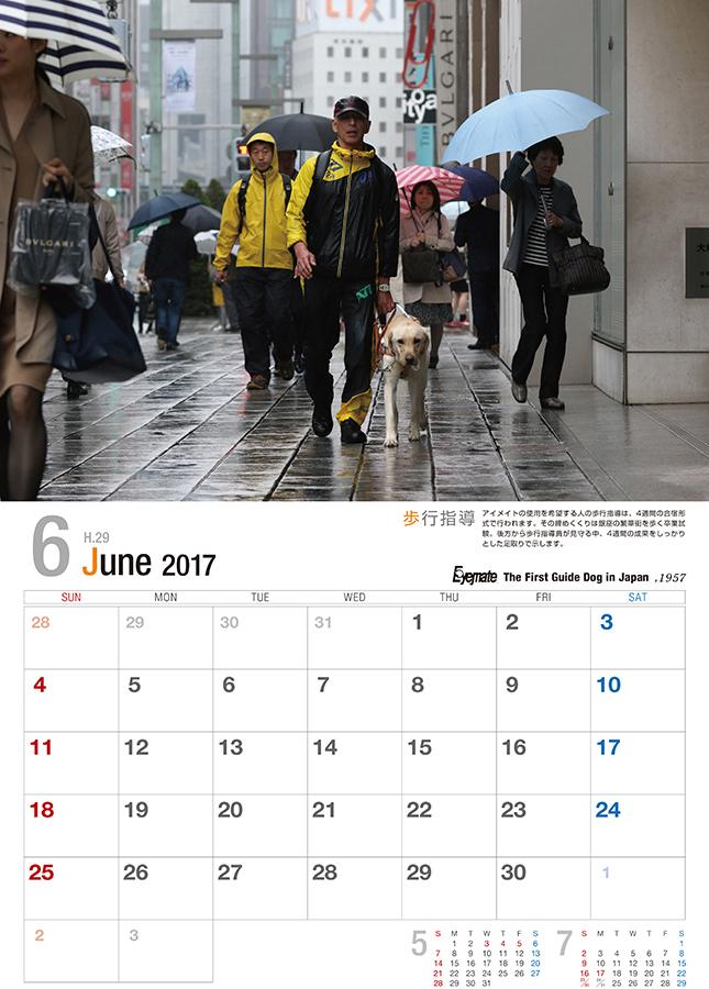2017 アイメイト60周年 アイメイトサポートカレンダー 販売開始_d0323943_23183016.jpg