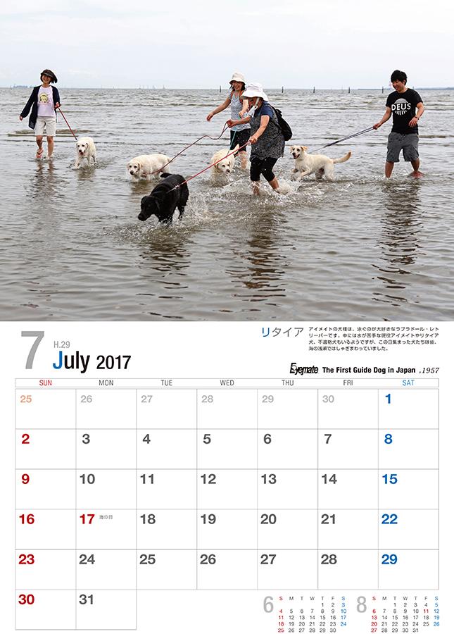 2017 アイメイト60周年 アイメイトサポートカレンダー 販売開始_d0323943_23230015.jpg