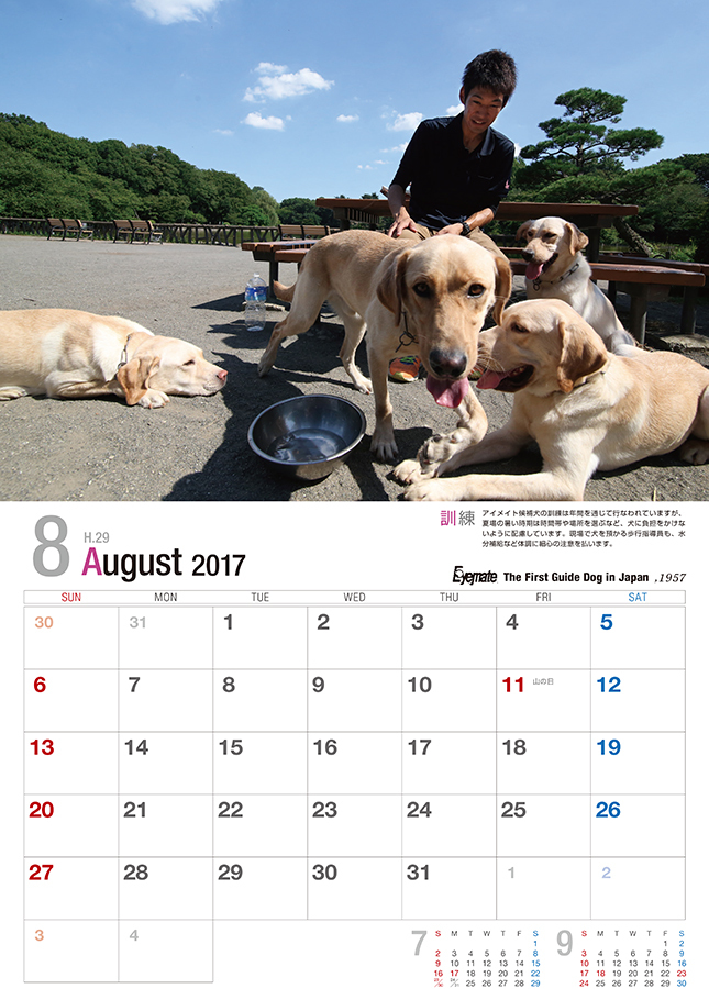 2017 アイメイト60周年 アイメイトサポートカレンダー 販売開始_d0323943_23401135.jpg