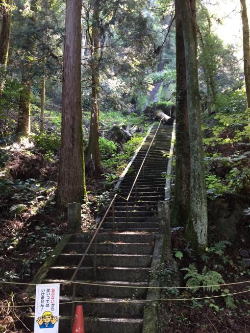 文珠山引き返し、飯の山展望台へ。_f0183846_14180575.jpg