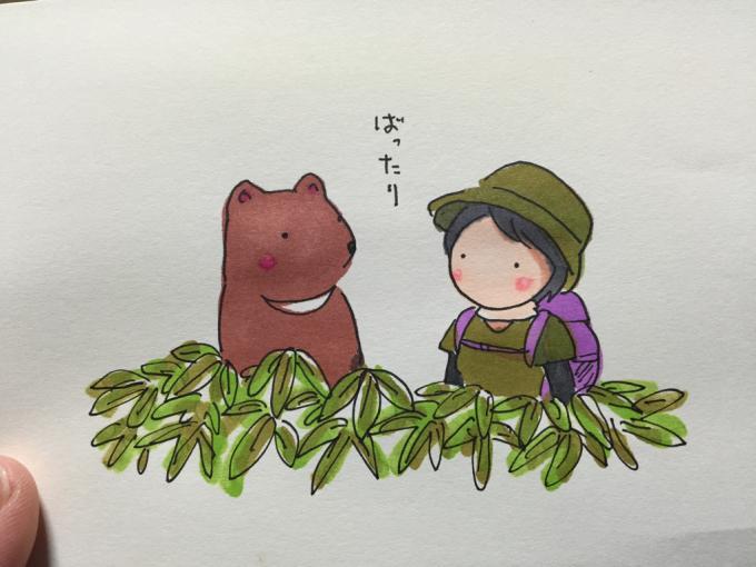 熊さんと山でバッタリ‼︎…は嫌です(^_^;)_f0183846_17373543.jpg