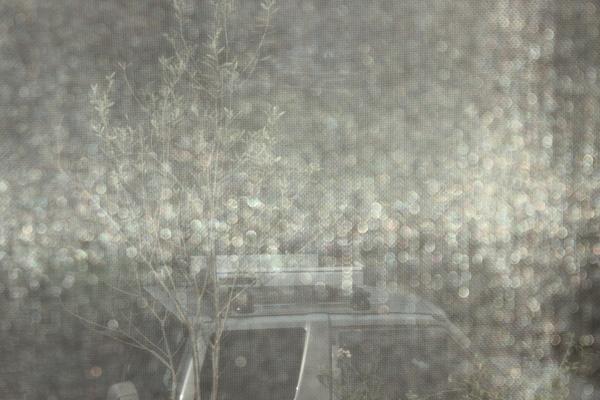 キラと里山の秋_a0174458_0545487.jpg