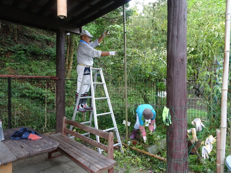 せっかく集まったが雨で作業中断・・・うみべの森_c0108460_16233597.jpg