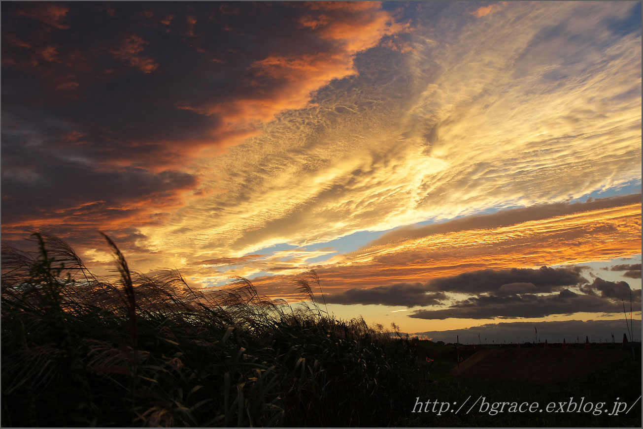 夕焼けに染まる_b0191074_22235999.jpg