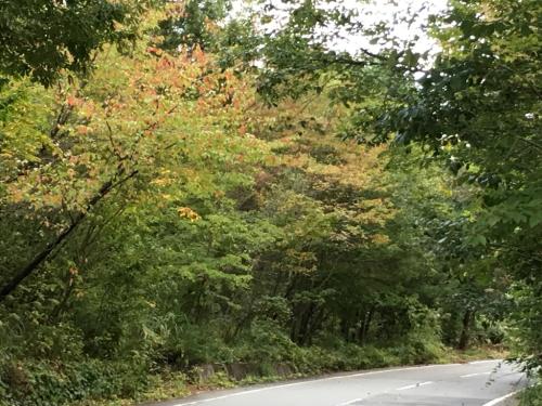 秋の訪れ_d0338282_18361004.jpg