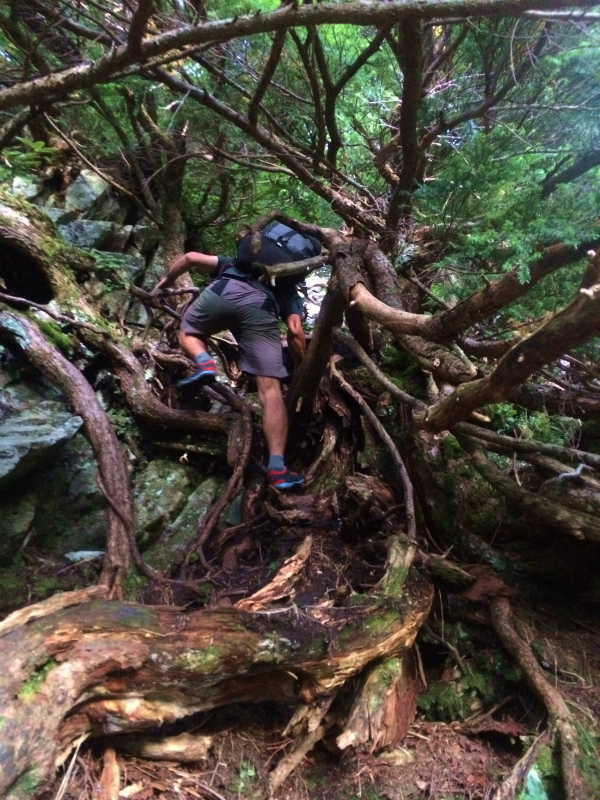 剱岳源次郎尾根 Fastpacking+Alpine Scrambling at Mt.Tsurugi Day.3 2016/09/01-03_b0220886_2193039.jpg