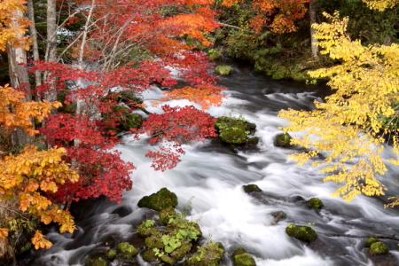今年の紅葉はどうかなぁ 9月30日_f0113639_14184071.jpg