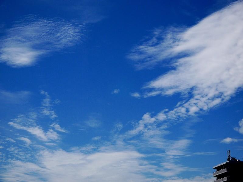 9月25日の雲_b0093754_22334685.jpg