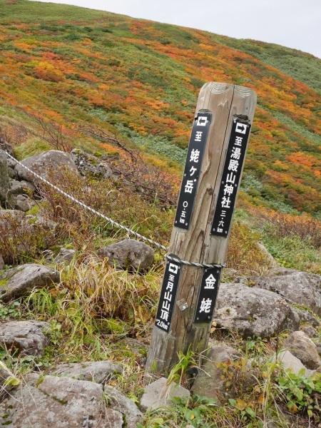 月山 姥ヶ岳から..._a0351368_17115915.jpg