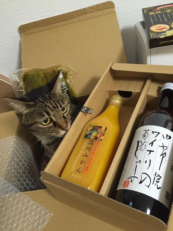 福岡と大分の香り_e0331868_22364971.jpg