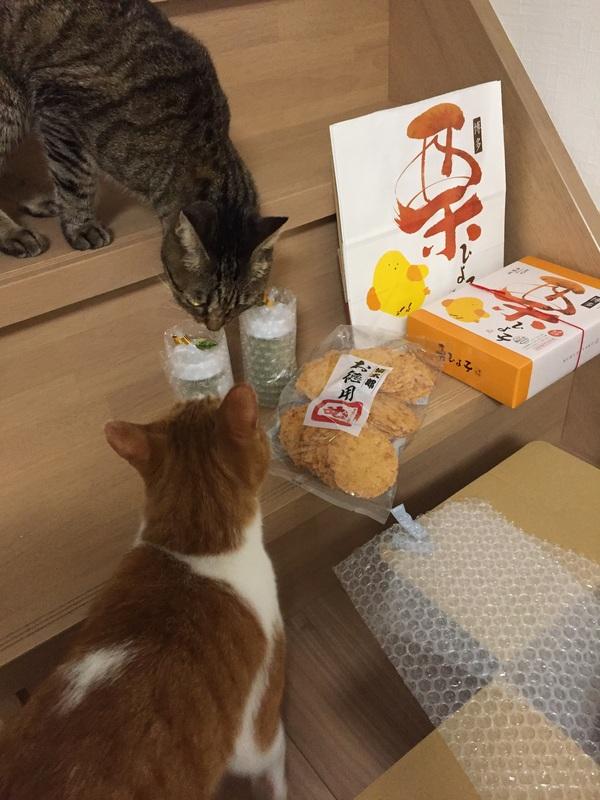 福岡と大分の香り_e0331868_22365012.jpg
