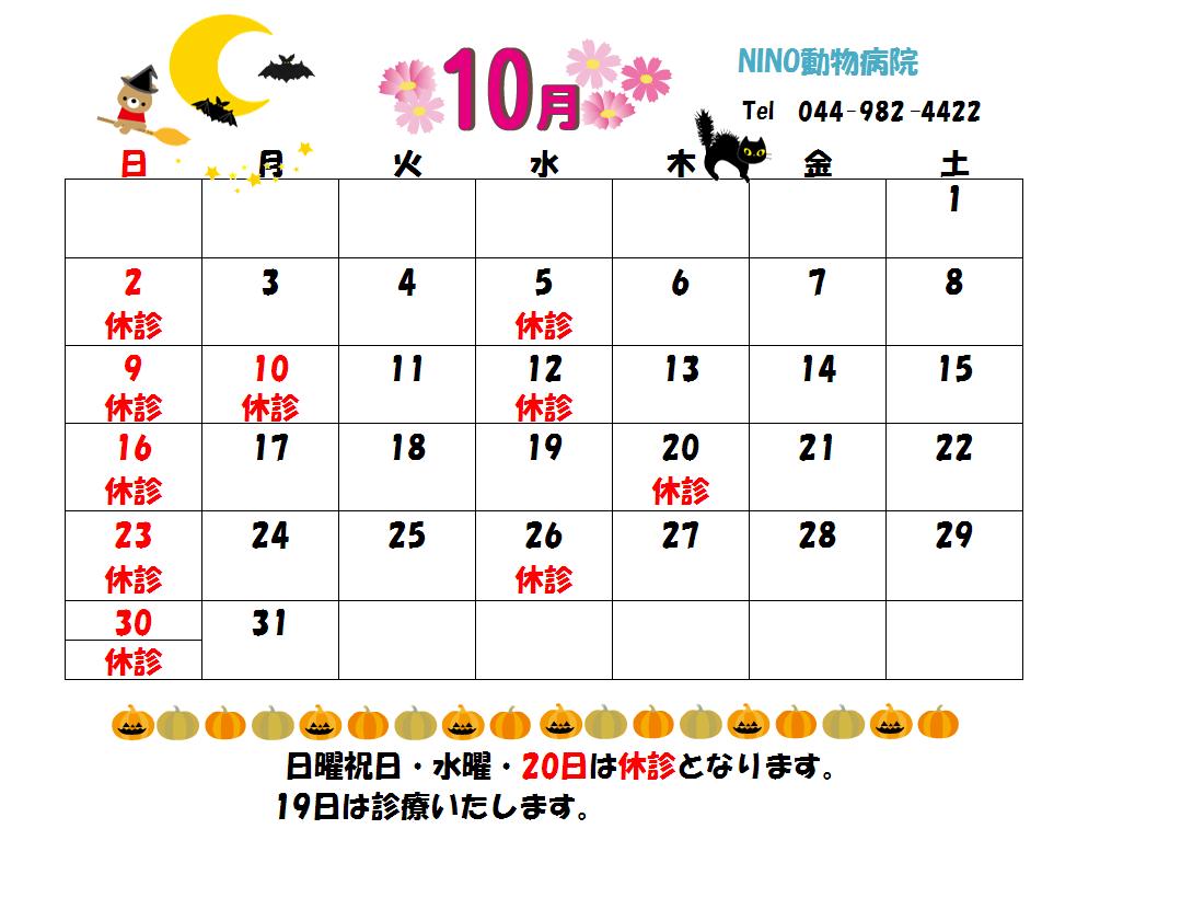 10月の診療日のお知らせ☆_e0288670_1233021.png