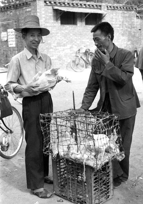 旧拍新掃描「86北京92杭州・鶏を売り買いする」_c0182775_1729062.jpg